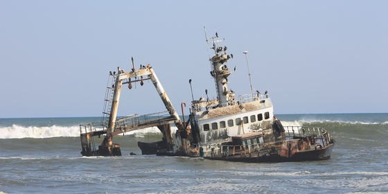 Full Day Zeila Shipwreck & Cape Cross Tour